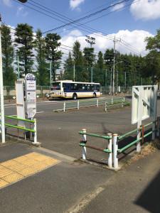 Keio_bus1